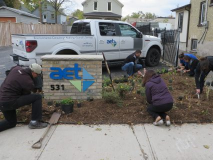 AET employees planting a rain garden at the head office located in Kitchener.