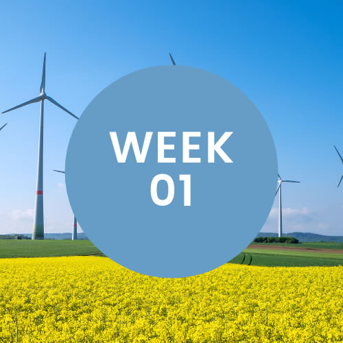 """Windmills in a green field. A blue circle with """"Week 01"""" is in center of photo."""