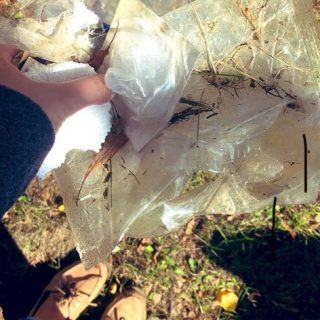 Person holding trash collected from a forest.